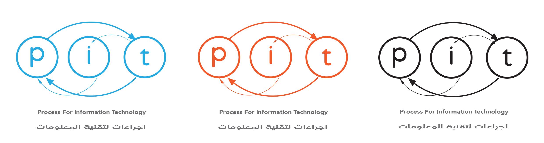 pit logo colors variations